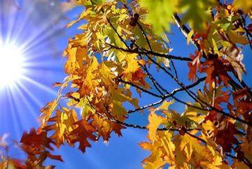 ANM a facut anuntul! Temperaturile revin la valori de vara in urmatoarele zile! Iata care sunt zonele vizate!