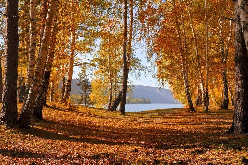 Meteo octombrie. Meteorologii anunță că vara revine: Temperaturi extreme în România