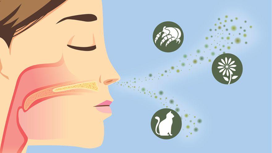 Remedii alergii. Cum poti sa ameliorezi reactiile alergice fara sa folosesti medicamente