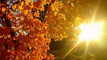 Vremea în weekend 19-20 octombrie 2019. ANM are vesti bune: temperaturi de vara pentru aceasta perioada