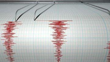 Romania s-a cutremurat din nou! Seismul s-a produs in aceasta dimineata in judetul Buzau! Iata ce magnitudine a avut!
