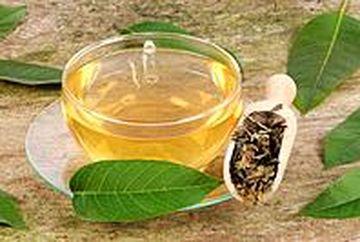 Ceai de frunze de nuc - beneficii nebanuite pentru sanatate