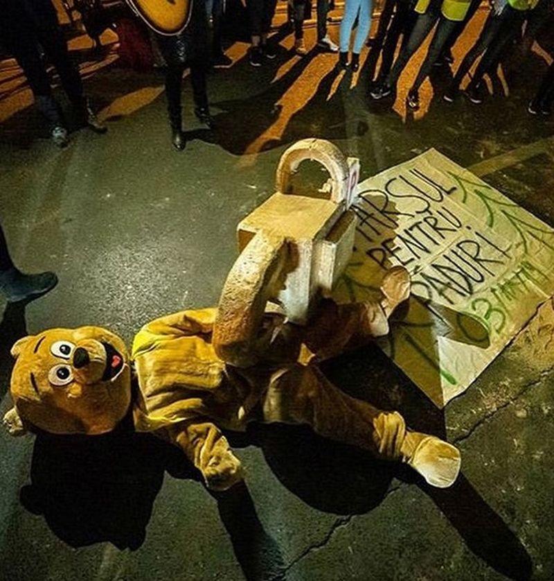 bucuresti protest paduri
