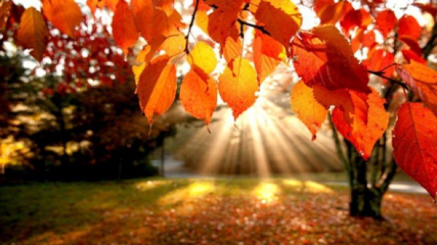 Vremea în weekend. Prognoza meteo 9-10 noiembrie. Cand vine frigul
