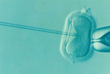 Infertilitatea se poate trata?