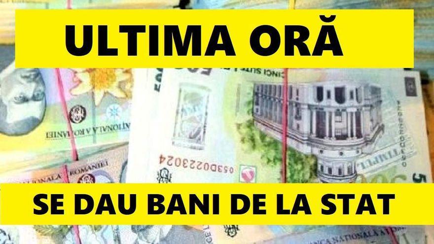 Se dau bani: 100.000 de euro de la stat! Ce sa faci ca sa ii poti avea