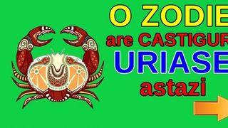 Horoscop 13.12.2019. Zodia pe care astrele o favorizeaza astazi: o reusita nesperata