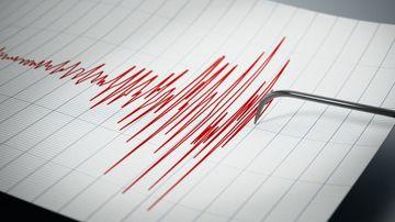 Cutremur cu magnitudine ingrijoratoare in noaptea de Revelion! Iata unde s-a produs primul sesim din acest an si in ce zone s-a resimtit!