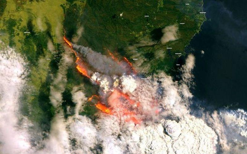 incendii australia