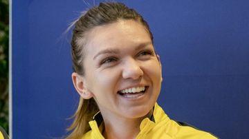 Simona Halep: ce avere a facut de cand joaca in WTA Tour