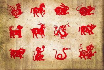 Zodiac chinezesc LUNAR FEBRUARIE 2020. Noi energii interpretate de inteleptii din Orient pentru zodia ta!