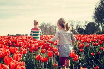 La modă, în 2020: Cele mai noi tendințe vestimentare de primăvară pentru copii