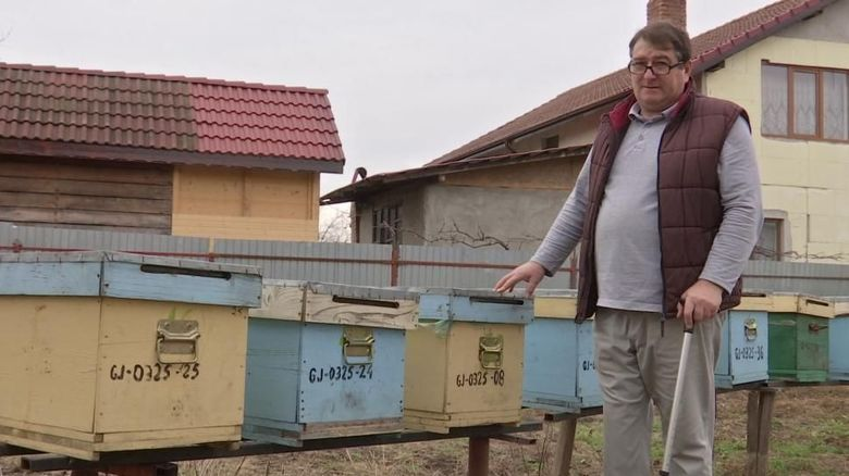Miere de la Târgu Jiu, expediată în China și Africa