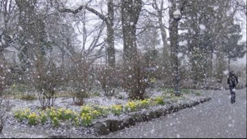 Prognoza meteo Bucuresti, 23-25 martie. Vremea este deosebit de rece, cu lapovita si ninsoare. Anuntul meteorologilor