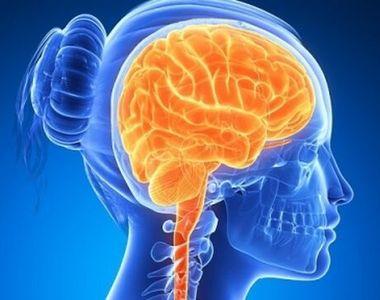Coronavirus distruge creierul, dar și alte organe. Ce trebuie să faci dacă ești infectat