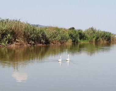 """Delta """"ascunsă"""" a Moldovei. Este un loc de o frumusețe rară - VIDEO"""