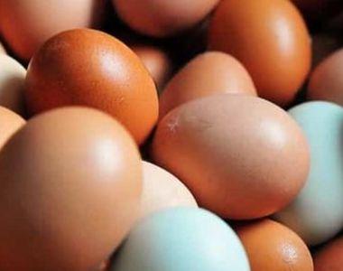 VIDEO| Cum alegem cel mai sănătos ou. Sfatul specialistului