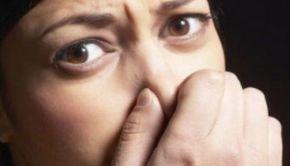 Legea mirosurilor intră în vigoare de astăzi. Ce amenzi vor fi aplicate - VIDEO