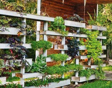 VIDEO - Inovație în România: Cum să ai o grădină pe verticală