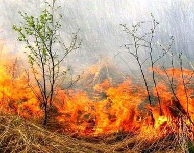 Incendiu puternic în Chitila