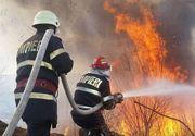 Incendiu puternic lângă București: ard 10 hectare de vegetație. Mesajul primit prin sistemul Ro-Alert