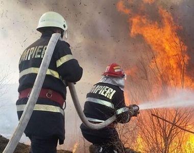 Incendiu puternic lângă București: ard 10 hectare de vegetație. Mesajul primit prin...