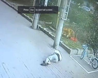 Întâmplare mai puțin obișnuită. Un bărbat a ajuns la spital după ce o pisică i-a căzut...