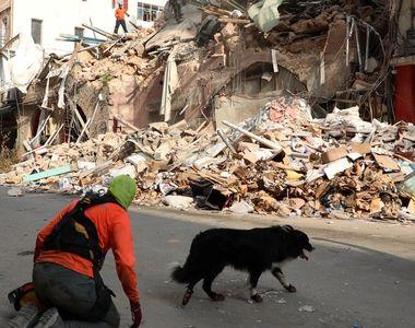 Clipe de infarct în Beirut. Semne de viață detectate sub dărâmături, la o lună de la...