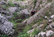 Intervenţie a Salvamont după ce unor adolescenţi li s-a făcut rău în timp ce urcau pe munte