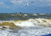 VIDEO | 10 turişti salvaţi din marea agitată