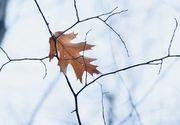 Vremea. ANM a anunțat prognoza meteo pentru joi 10 septembrie. Unde vor fi averse și ploi slabe