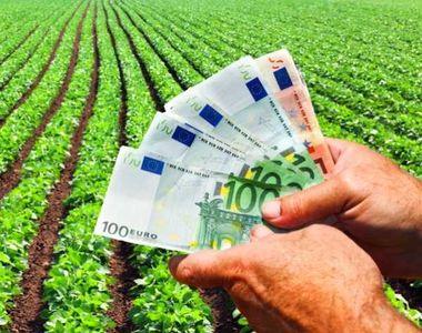 Cum poți să primești 50 de hectare de la stat pentru a face agricultură