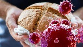 VIDEO - COVID rămâne pe pâine. Virusul rezistă câteva ore