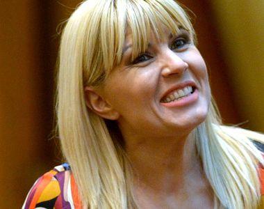 Elena Udrea a devăluit pe cine a pus ștampila la secțiile de votare