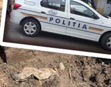 VIDEO - Mamă ucisă, descoperire macabră. Fiul, suspect