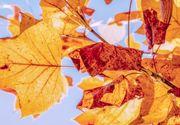 Vremea. ANM a anunțat prognoza meteo pentru marți, 27 octombrie. Se încălzește ușor