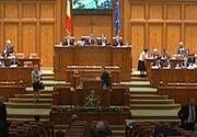 VIDEO - Partidul Ecologist Român, în lupta pentru Parlament. Politicieni de marcă și artiști se regăsesc pe liste