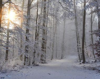 Iarna își intră în drepturi - Anunțul meteo care cutremură România. Frig și ninsori în...
