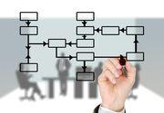 Ce este organigrama unei firme?