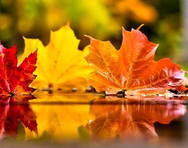 Prognoza meteo, 13 noiembrie. Temperaturile vor fi normale pentru această perioadă a...