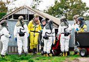 Prima țară din Europa de Est care a detectat coronavirus la nurci. Cât de mare e pericolul
