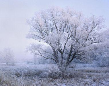 Prognoza meteo, azi 26 noiembrie 2020. Dimineață rece și ceață