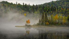 Meteorologii au făcut anunțul. 36 de judeţe sunt sub cod galben de ceaţă în această dimineaţă