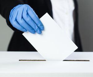 alegeri parlamentare 2020 diaspora
