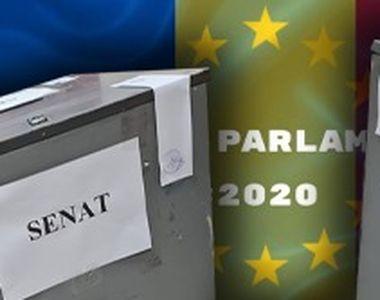 VIDEO - Noaptea alegerilor parlamentare a fost coșmarul politicienilor