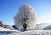 Cum va fi vremea de Revelion 2021? Anunțul de ultimă oră al meteorologilor