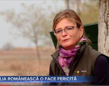 VIDEO-  Elvețianca pe care o face fericită glia românească