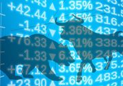 Curs valutar, azi 11 ianuarie 2021. Pe ce poziție se clasează leul