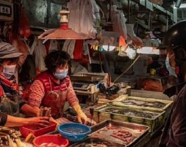 Echipa  OMS a ajuns în Wuhan pentru a investiga originile pandemiei COVID-19