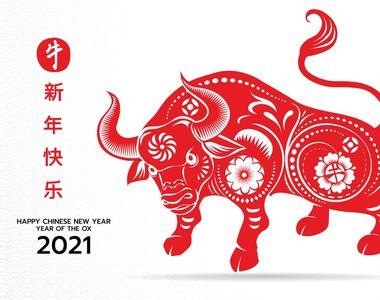 Zodiac chinezesc 2021: Este anul Bivolului Alb de Metal! Ce semnifică și de ce anume...
